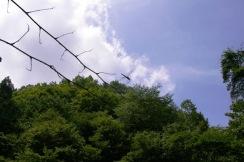 """佐藤成示夏季講座(2010""""7・31) 029"""